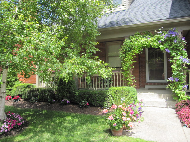 quaint Cary St. will leave you in awe: this is in the heart of downtown Buffalo!