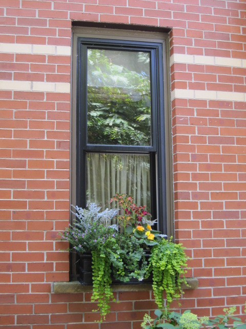 small windowboxes give life