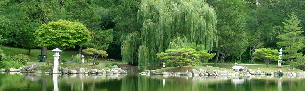 Japanese Gardens, behind Buffalo History Museum