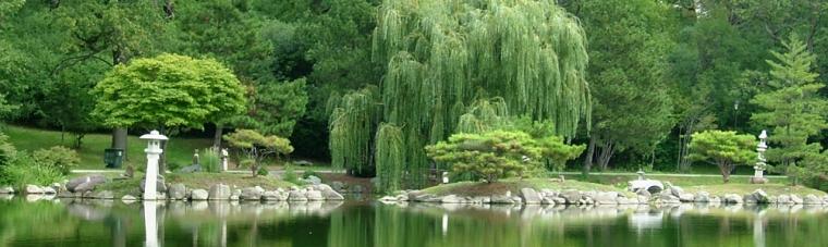 Japanese Gardens, behind Buffalo History Museum
